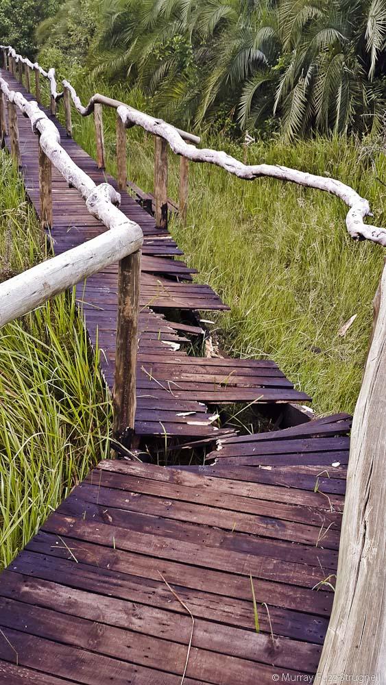 Mopiri Boardwalk